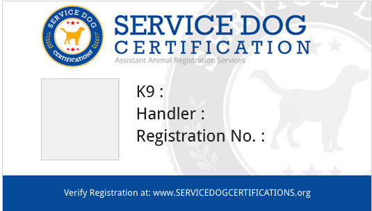 Registration Requirements Service Dog Service Dog Certifications